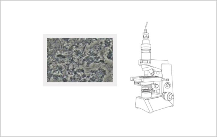 位相差顕微鏡(Picoral)